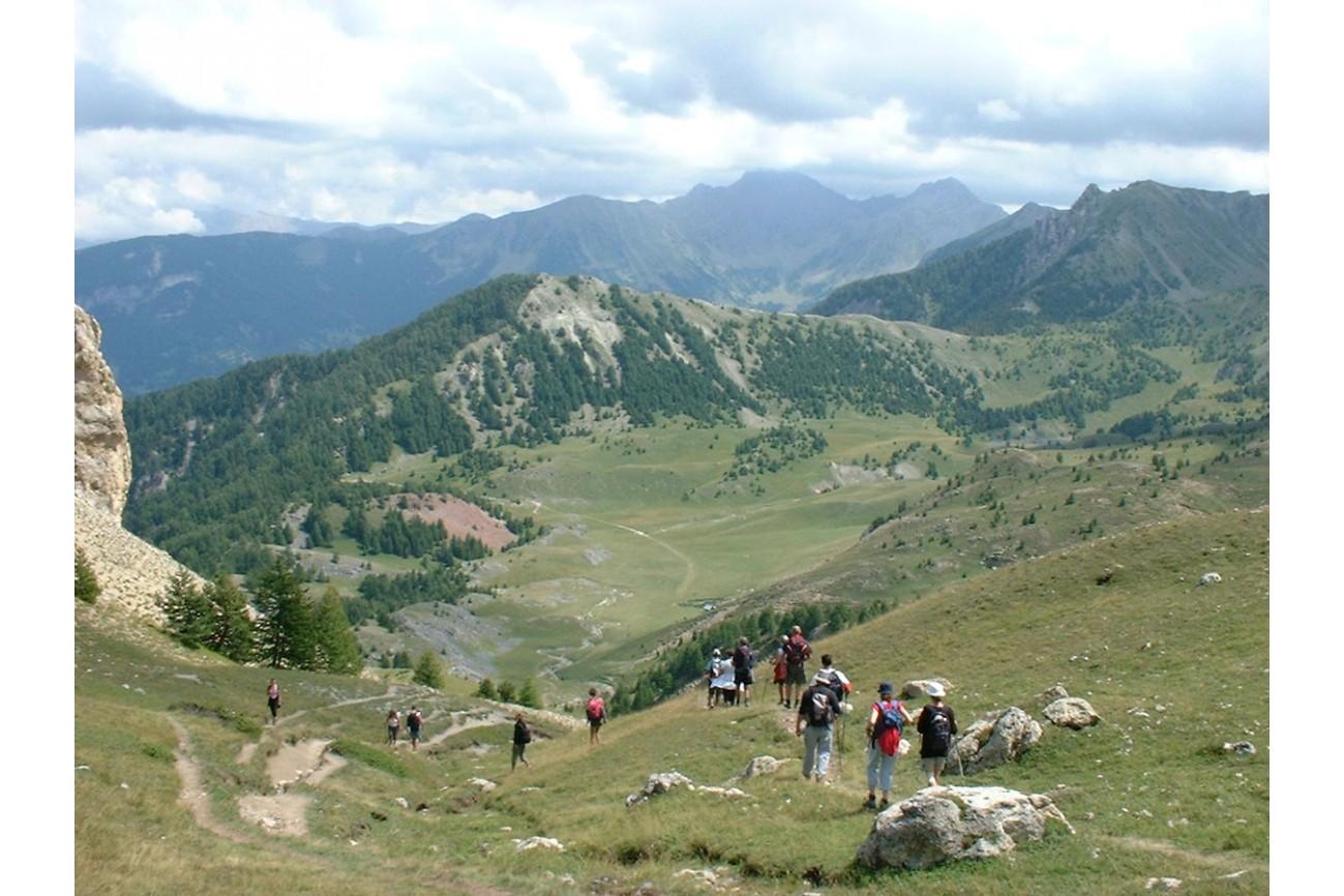 Week-end Flore printanière et torrents de montagne en Embrunais  du 16 au 17 juin 2018